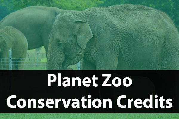 What Are Conservation Credits In Planet Zoo?